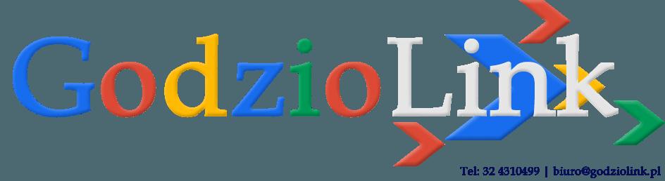SEO sklep – Pozycjonowanie stron internetowych – GodzioLink.pl