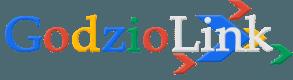 SEO sklep - Pozycjonowanie stron internetowych - GodzioLink.pl
