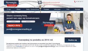 Norwegia Consulting